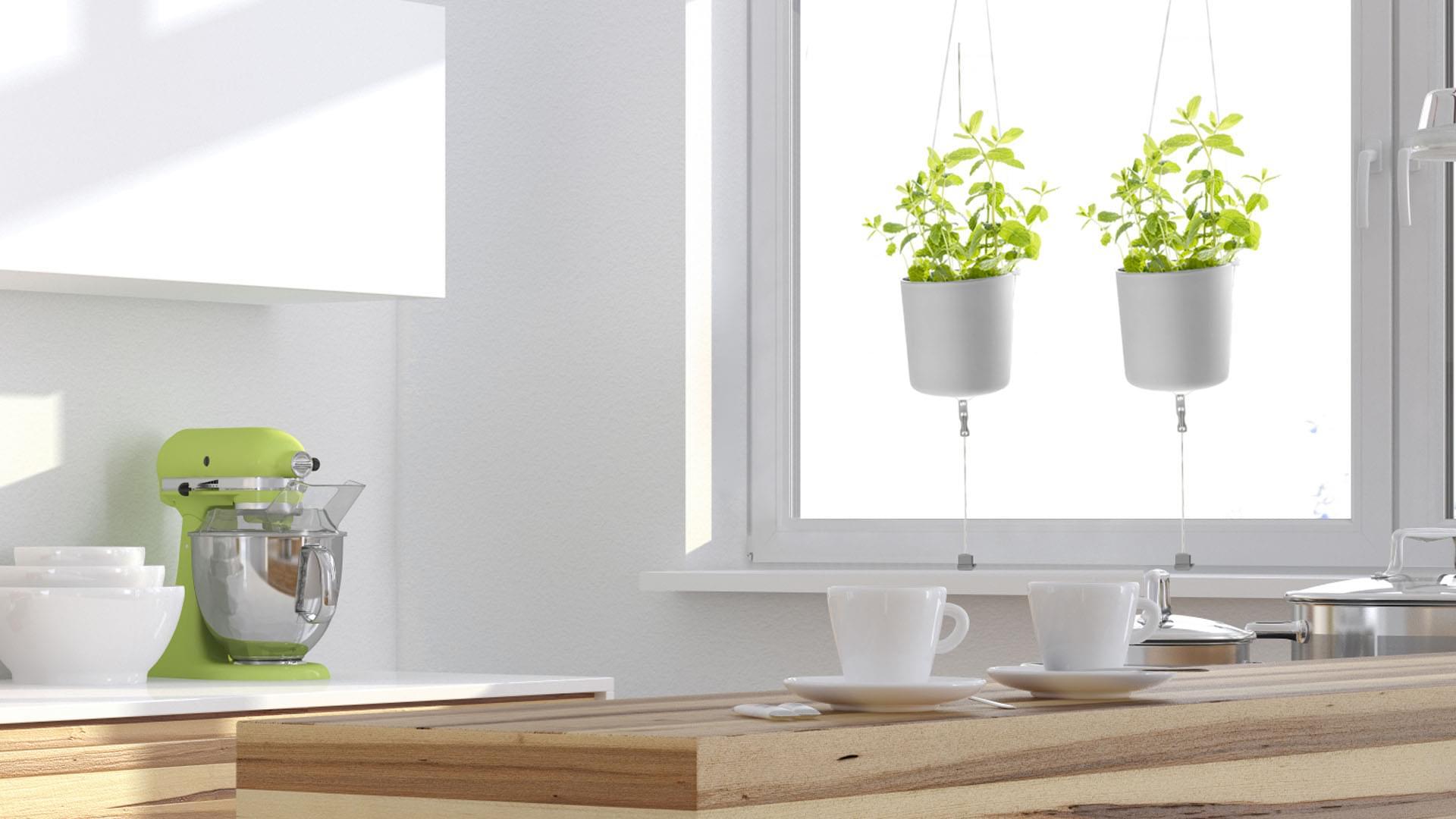 reloaded hecht international. Black Bedroom Furniture Sets. Home Design Ideas