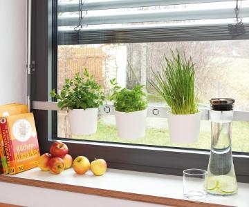Kräuter- und Pflanzenleiter